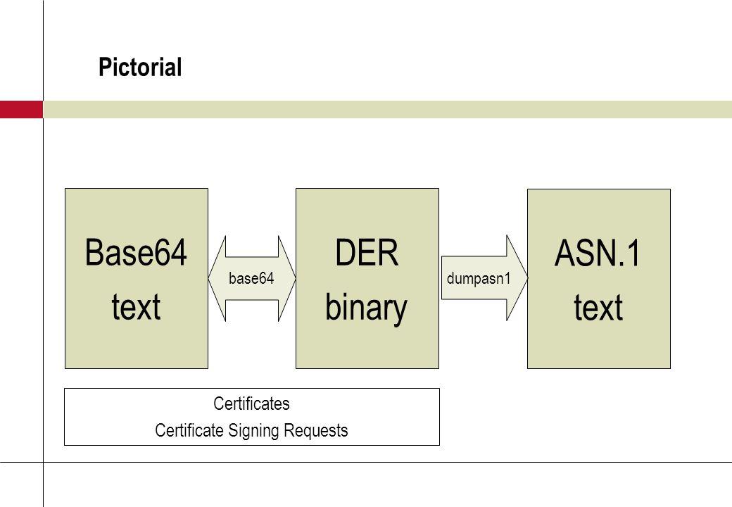 Pictorial Base64 text DER binary ASN.1 text base64 dumpasn1 Certificates Certificate Signing Requests