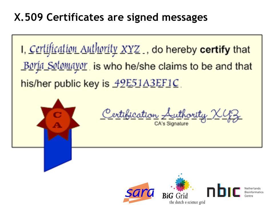 Certificate Body Issuer The issuer s Distinguished Name Validity Validity period of this certificate Subject The Distinguished Name (DN) of the user.