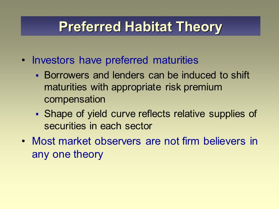 Investors have preferred maturities  Borrowers and lenders can be induced to shift maturities with appropriate risk premium compensation  Shape of y
