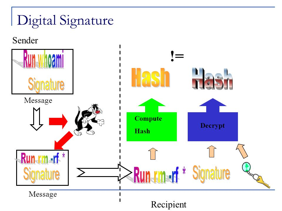 Digital Signature Message Compute Hash Decrypt != Recipient Sender