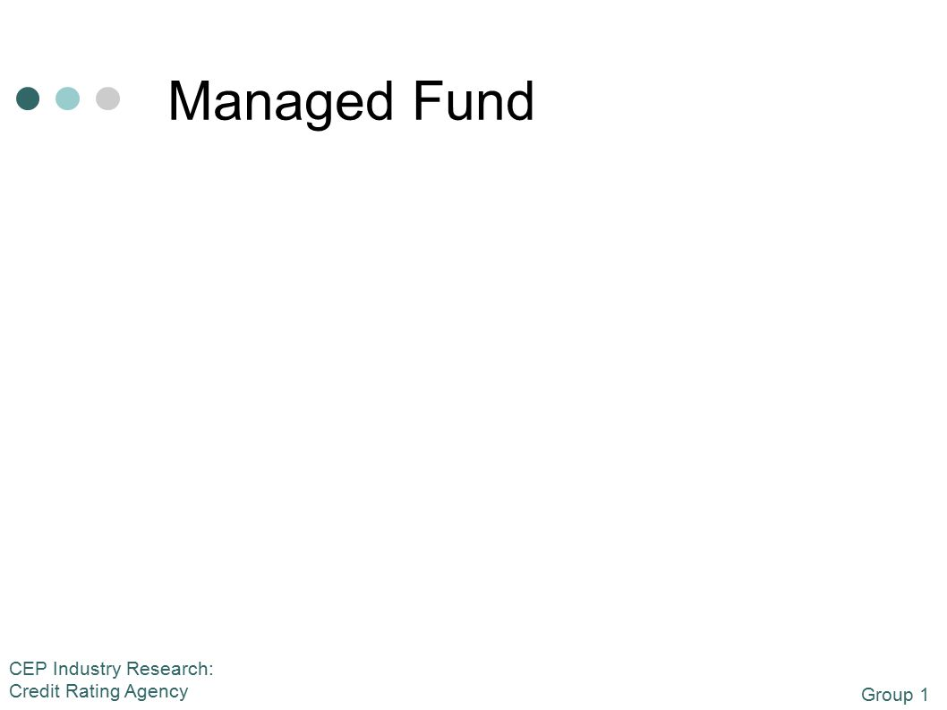 Group 1 CEP Industry Research: Credit Rating Agency Managed Fund