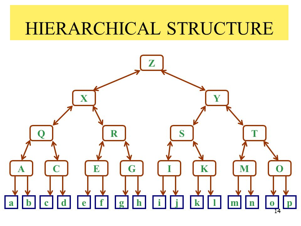 14 HIERARCHICAL STRUCTURE Z X Q A Y RST CEGIKMO abcdefghijklmnop