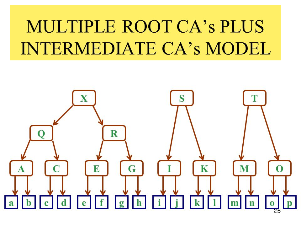 25 MULTIPLE ROOT CA's PLUS INTERMEDIATE CA's MODEL X Q A R ST CEGIKMO abcdefghijklmnop