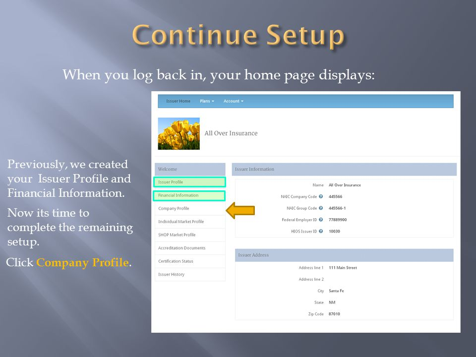 When you log back in, your home page displays: Previously, we created your Issuer Profile and Financial Information.