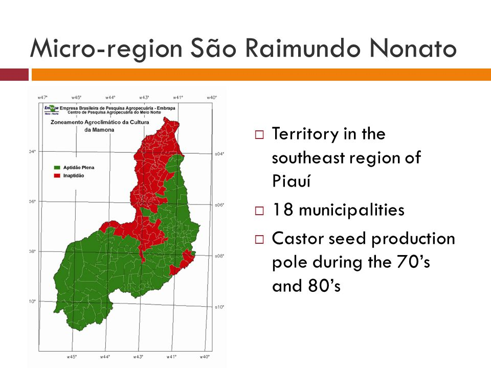 Micro-region São Raimundo Nonato  Territory in the southeast region of Piauí  18 municipalities  Castor seed production pole during the 70's and 80's