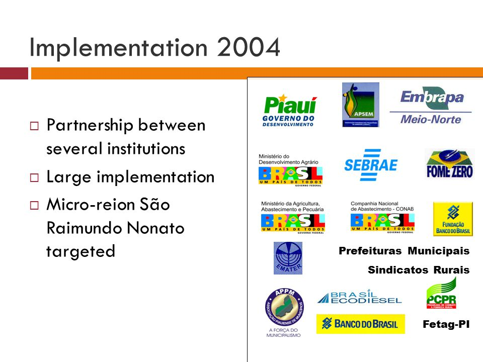 Prefeituras Municipais Fetag-PI Sindicatos Rurais Implementation 2004  Partnership between several institutions  Large implementation  Micro-reion São Raimundo Nonato targeted