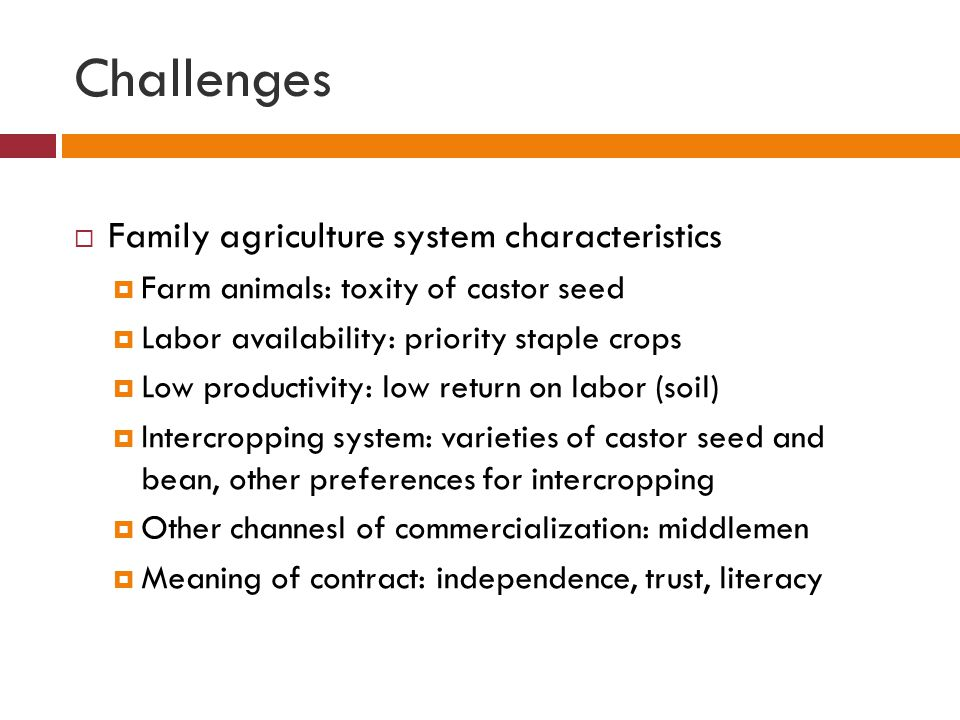 Challenges  Family agriculture system characteristics  Farm animals: toxity of castor seed  Labor availability: priority staple crops  Low productivity: low return on labor (soil)  Intercropping system: varieties of castor seed and bean, other preferences for intercropping  Other channesl of commercialization: middlemen  Meaning of contract: independence, trust, literacy