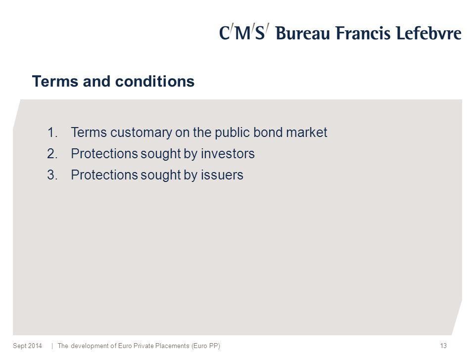 | Terms and conditions 1.Terms customary on the public bond market 2.Protections sought by investors 3.Protections sought by issuers 13The development