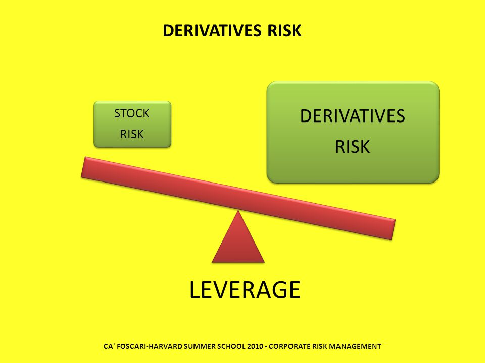 CA' FOSCARI-HARVARD SUMMER SCHOOL 2010 - CORPORATE RISK MANAGEMENT STOCK RISK DERIVATIVES RISK DERIVATIVES RISK LEVERAGE