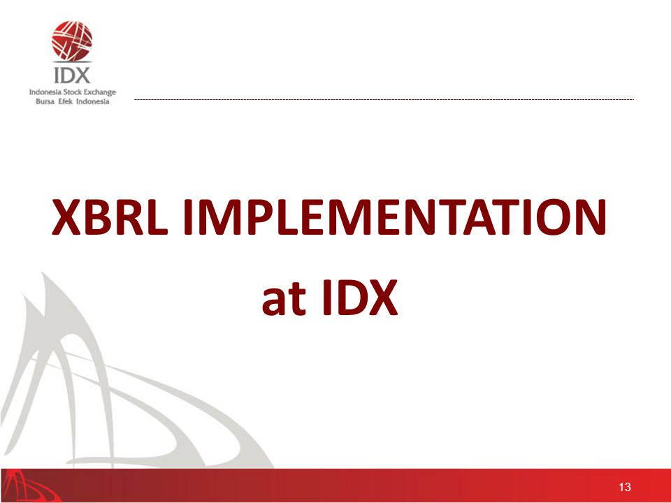13 XBRL IMPLEMENTATION at IDX
