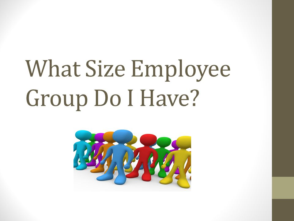 What Size Employee Group Do I Have