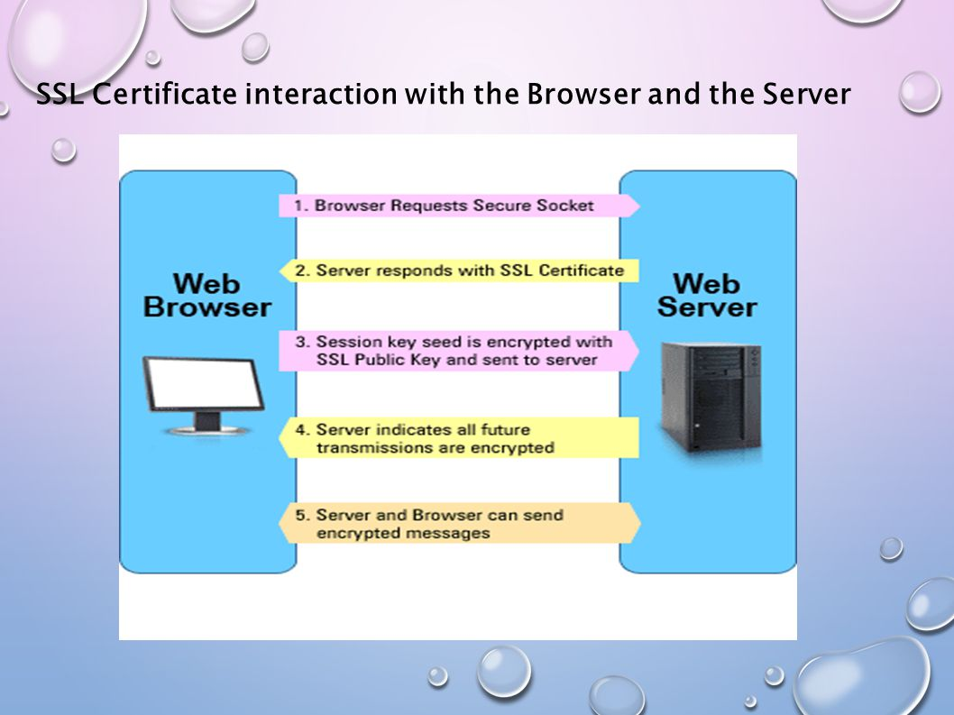 SSL Certificate interaction with the Browser and the Server