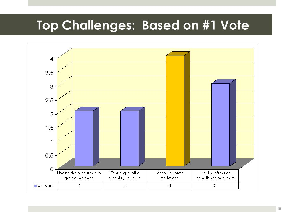 Top Challenges: Based on #1 Vote 18