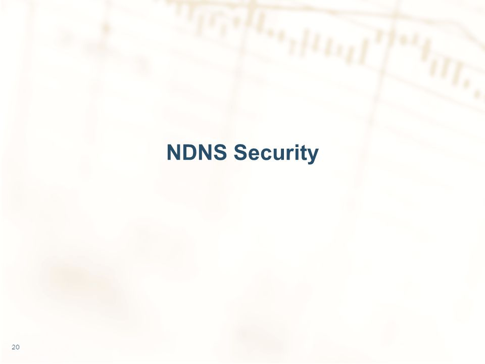 NDNS Security 20