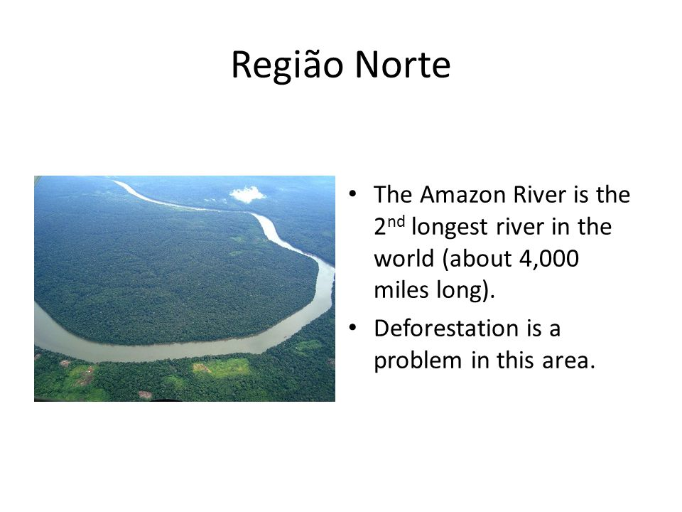 Região Norte The Amazon River is the 2 nd longest river in the world (about 4,000 miles long).