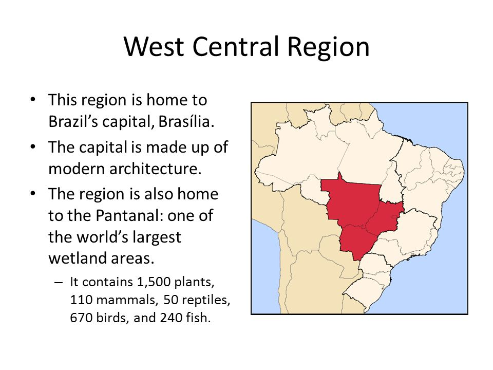 West Central Region This region is home to Brazil's capital, Brasília.
