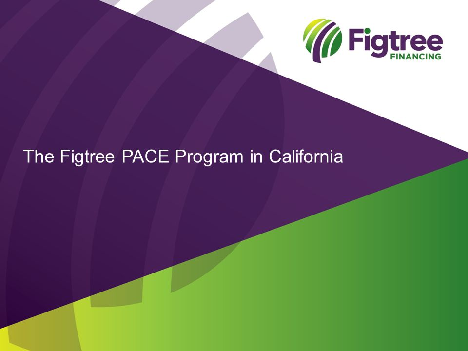 The Figtree PACE Program in California