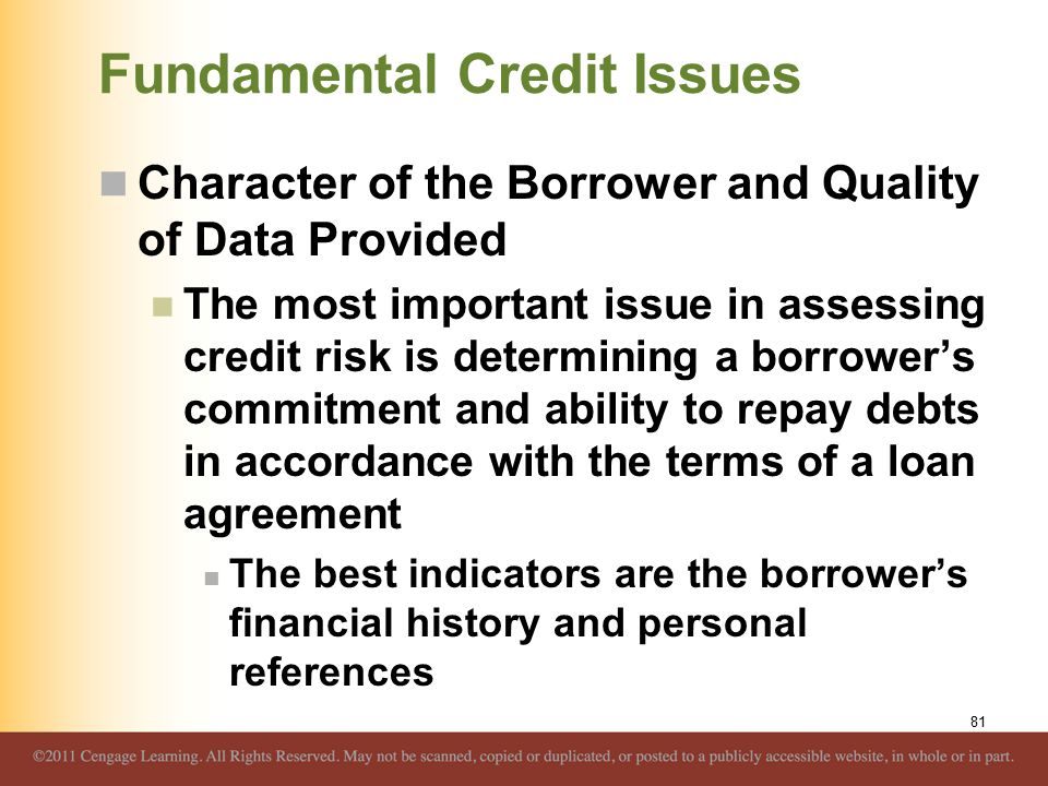 Fundamental Credit Issues Character of the Borrower and Quality of Data Provided The most important issue in assessing credit risk is determining a bo