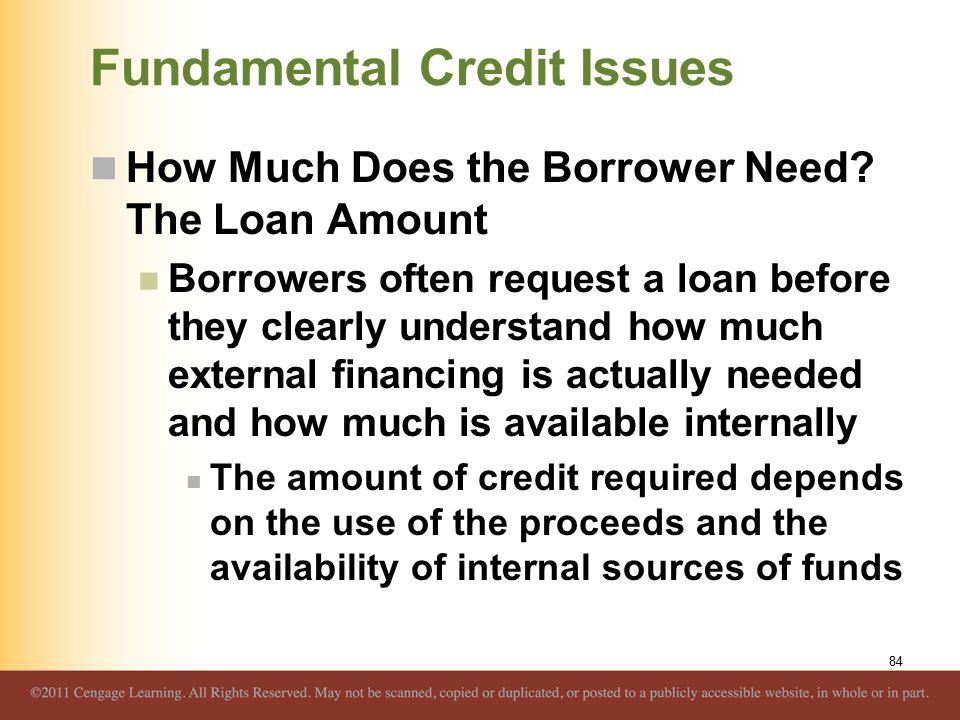 Fundamental Credit Issues How Much Does the Borrower Need? The Loan Amount Borrowers often request a loan before they clearly understand how much exte