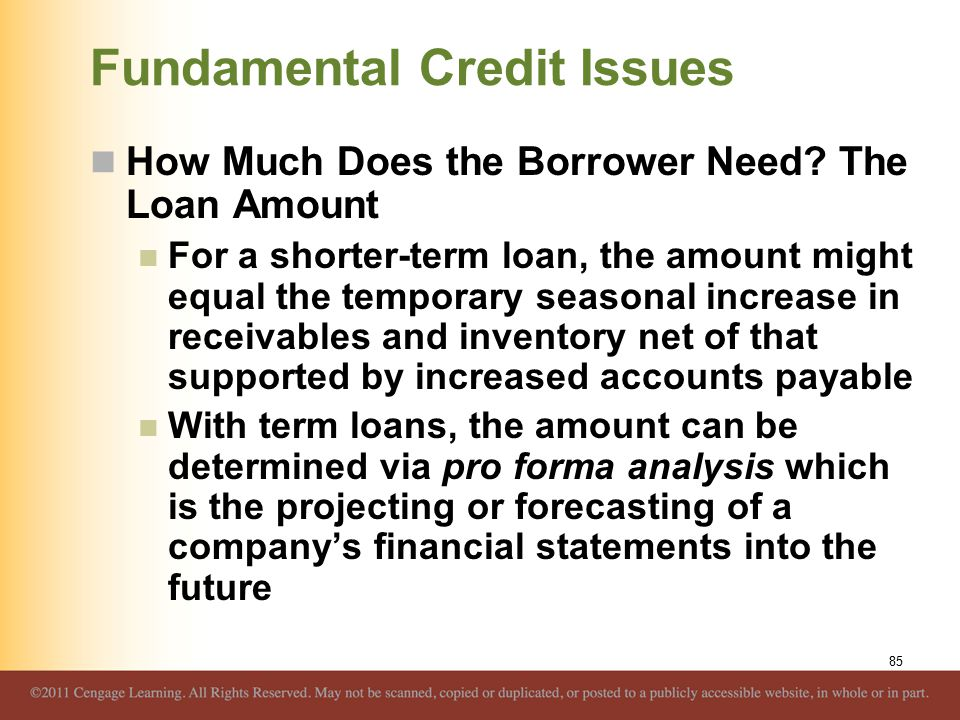 Fundamental Credit Issues How Much Does the Borrower Need? The Loan Amount For a shorter-term loan, the amount might equal the temporary seasonal incr