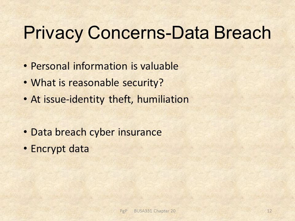 Privacy Concerns-Data Breach Personal information is valuable What is reasonable security.
