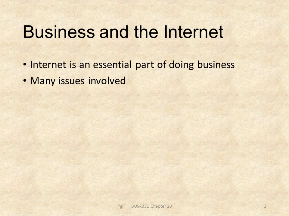 Internet is an essential part of doing business Many issues involved PgP BUSA331 Chapter 202