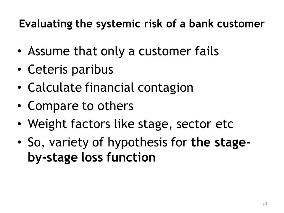 Evaluating the systemic risk of a bank customer Assume that only a customer fails Ceteris paribus Calculate financial contagion Compare to others Weight factors like stage, sector etc So, variety of hypothesis for the stage- by-stage loss function 24