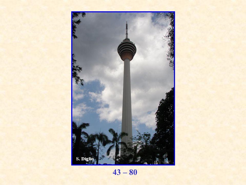 43 – 80 S. Diglio