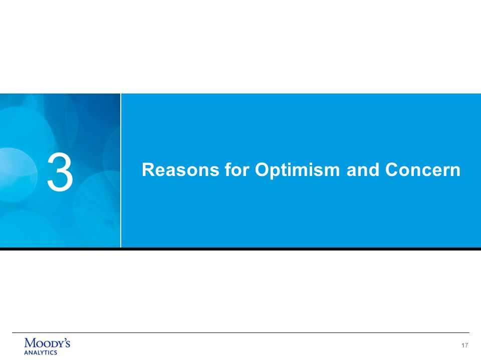 17 Reasons for Optimism and Concern 3