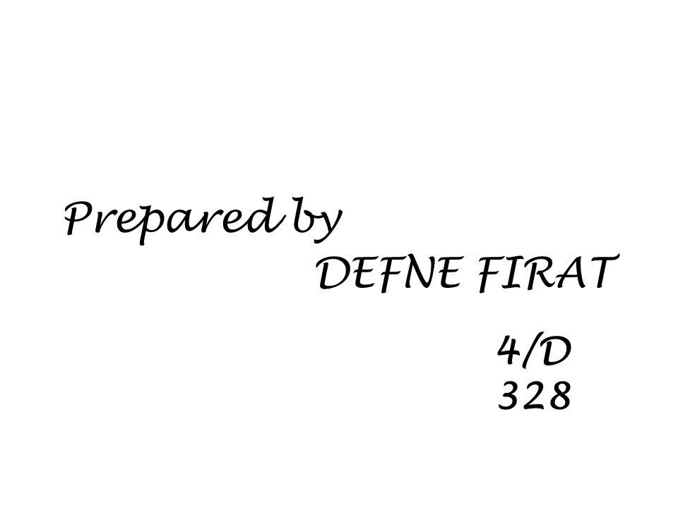 4/D 328 Prepared by DEFNE FIRAT