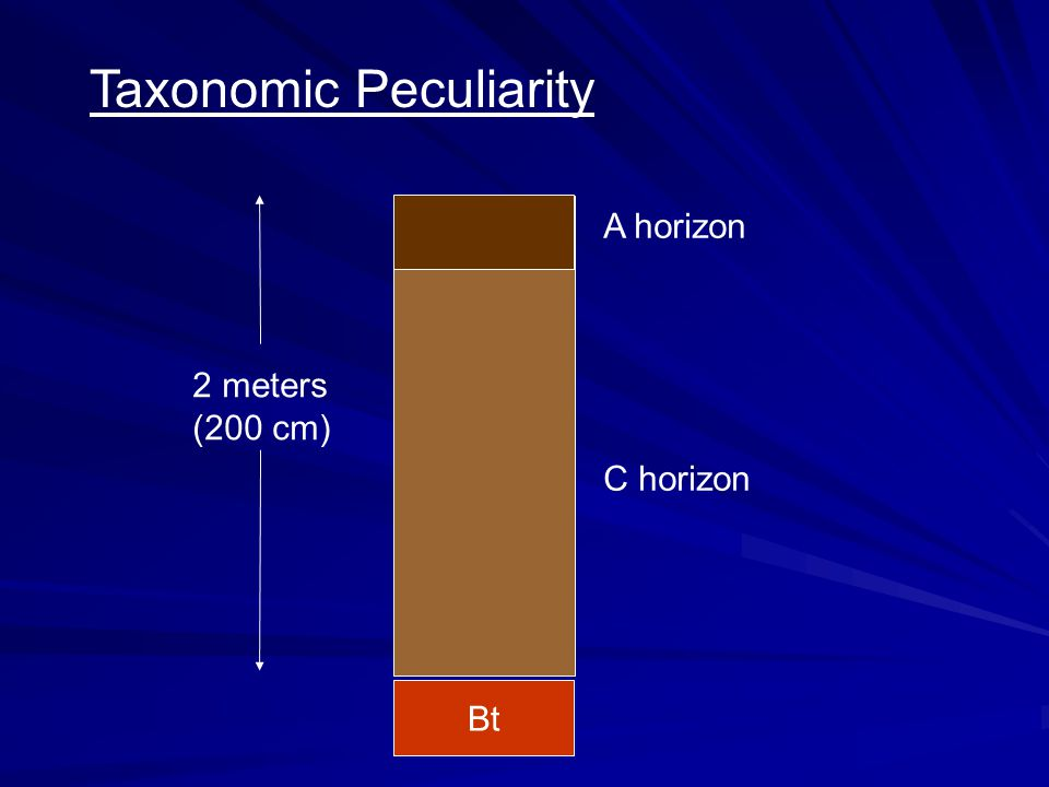 Taxonomic Peculiarity 2 meters (200 cm) A horizon C horizon Bt
