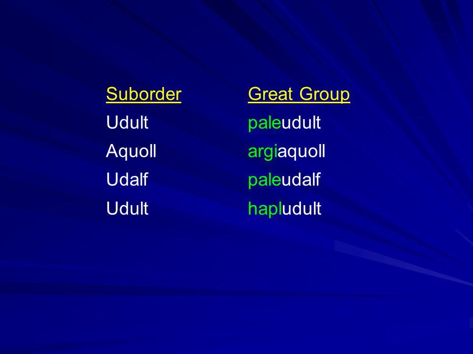 SuborderGreat Group Udultpaleudult Aquollargiaquoll Udalfpaleudalf Udulthapludult