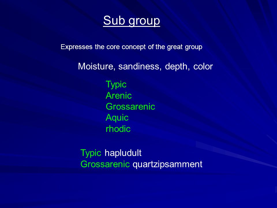 Sub group Expresses the core concept of the great group Moisture, sandiness, depth, color Typic hapludult Grossarenic quartzipsamment Typic Arenic Grossarenic Aquic rhodic