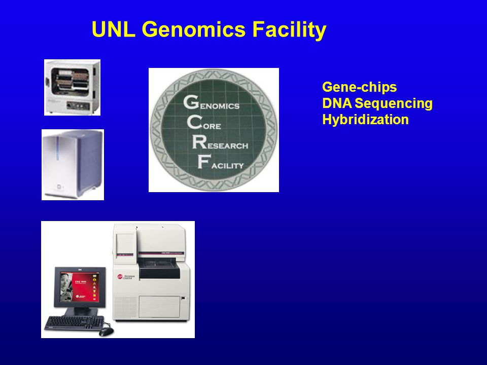 UNL Genomics Facility Gene-chips DNA Sequencing Hybridization