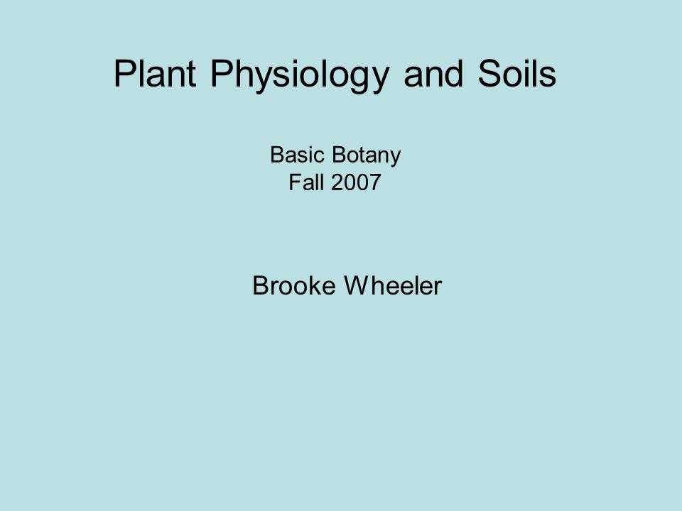 Plant Physiology and Soils Basic Botany Fall 2007 Brooke Wheeler