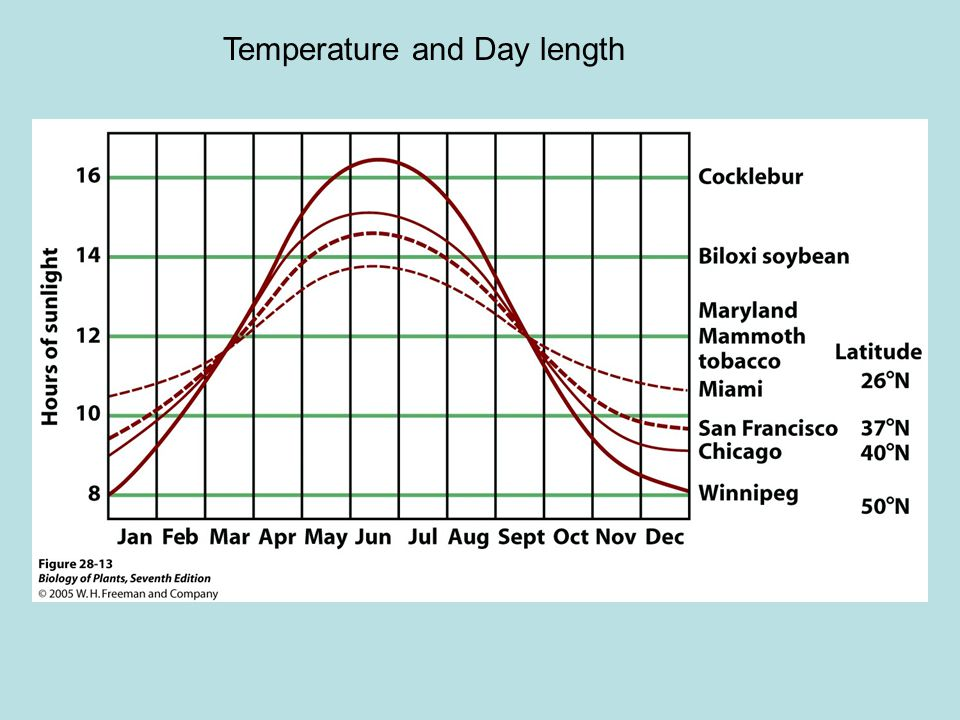 Temperature and Day length