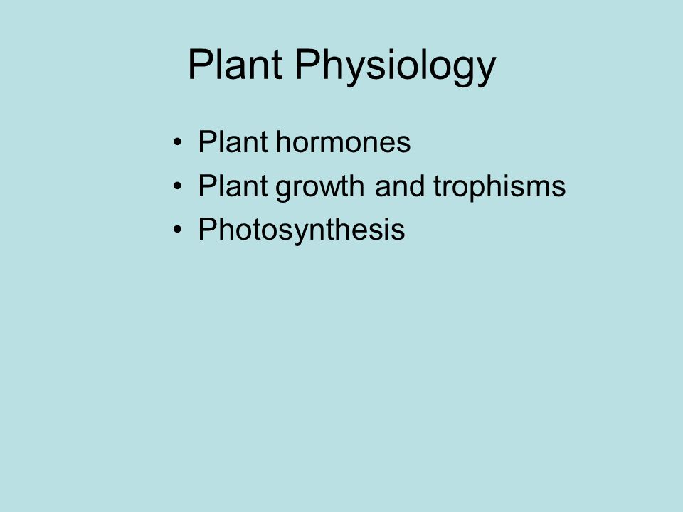 Plant Physiology Plant hormones Plant growth and trophisms Photosynthesis