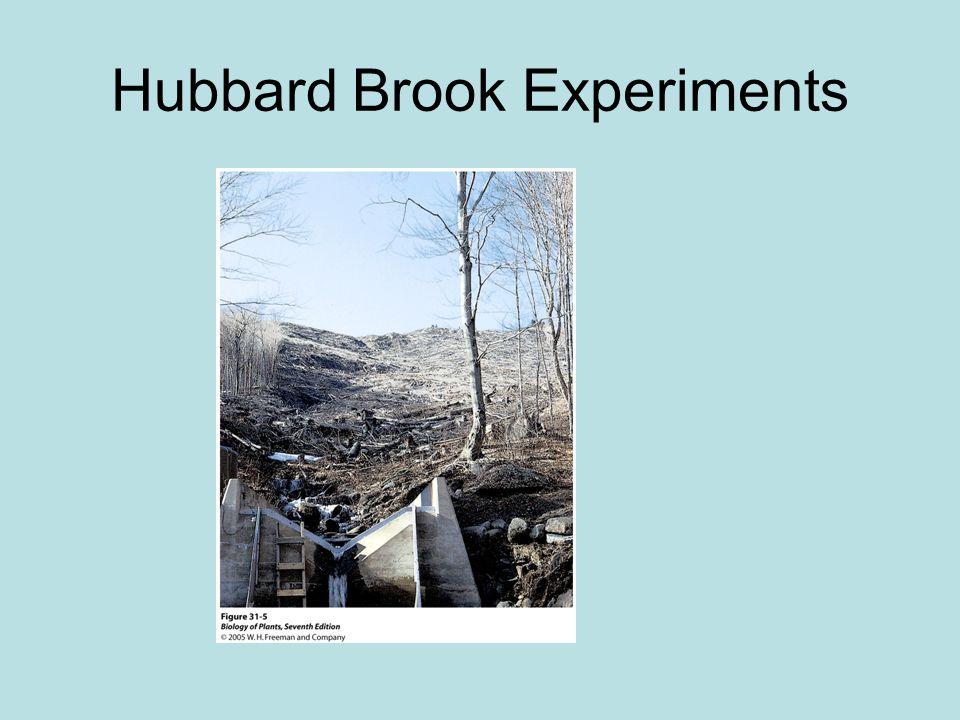 Hubbard Brook Experiments