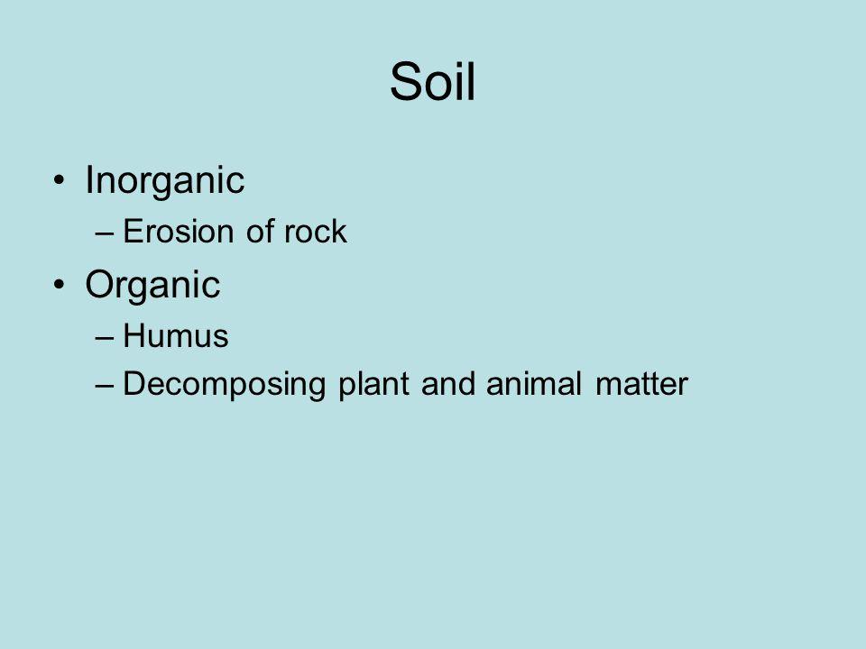 Soil Inorganic –Erosion of rock Organic –Humus –Decomposing plant and animal matter