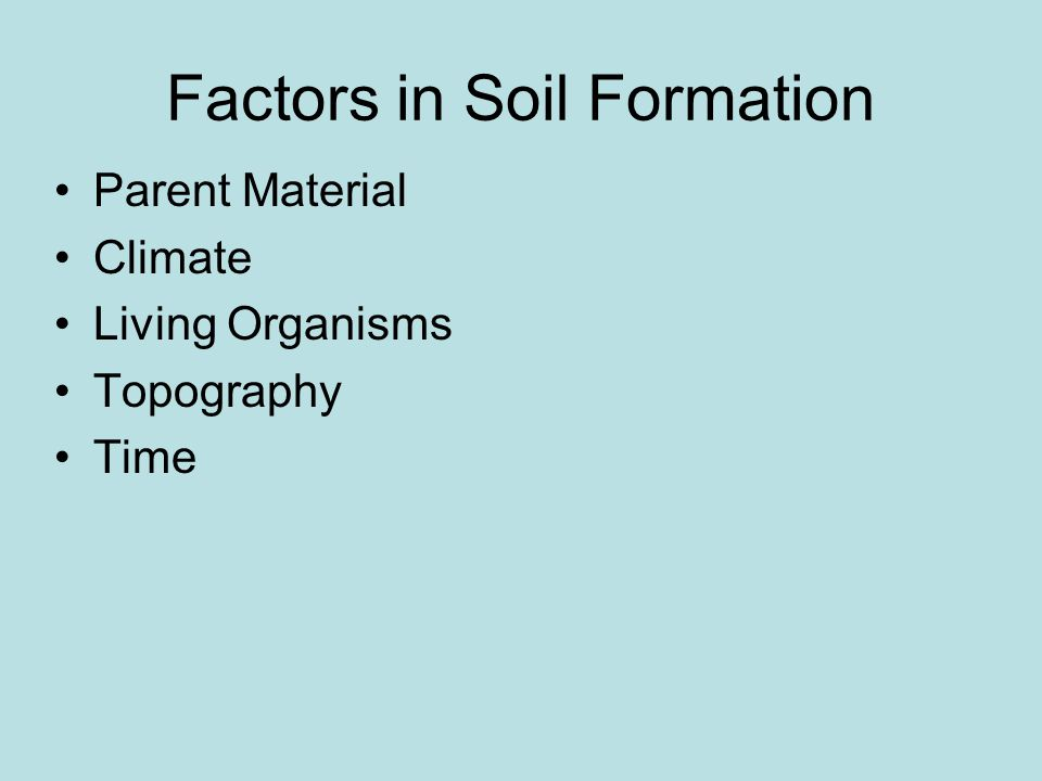 Factors in Soil Formation Parent Material Climate Living Organisms Topography Time