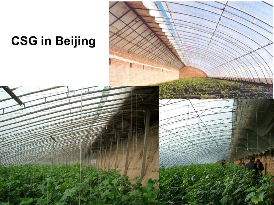CSG in Beijing