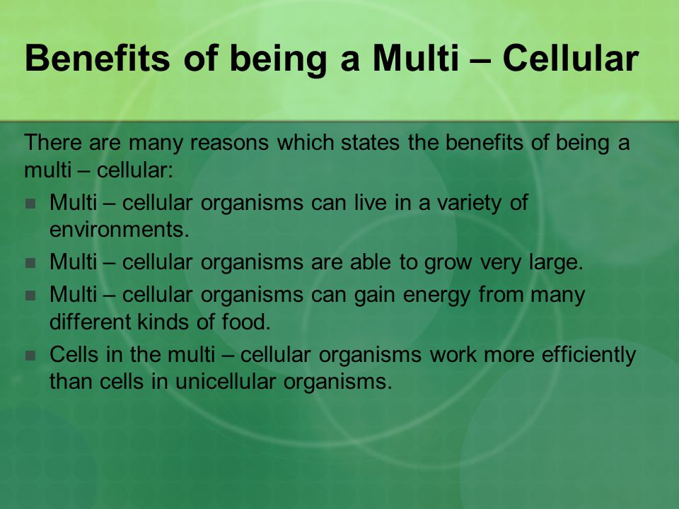 Benefits of being a Multi – Cellular There are many reasons which states the benefits of being a multi – cellular: Multi – cellular organisms can live in a variety of environments.