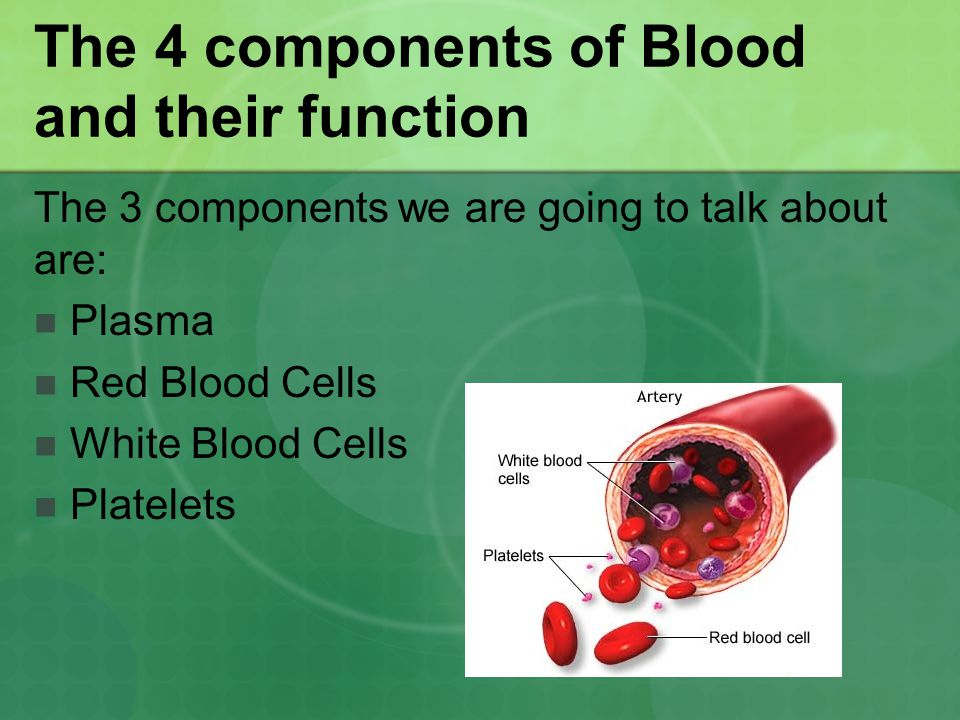 The 4 components of Blood and their function The 3 components we are going to talk about are: Plasma Red Blood Cells White Blood Cells Platelets