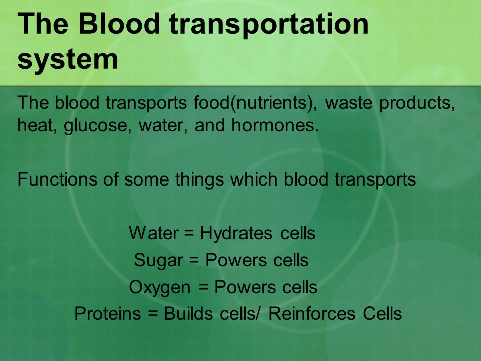 The Blood transportation system The blood transports food(nutrients), waste products, heat, glucose, water, and hormones. Functions of some things whi