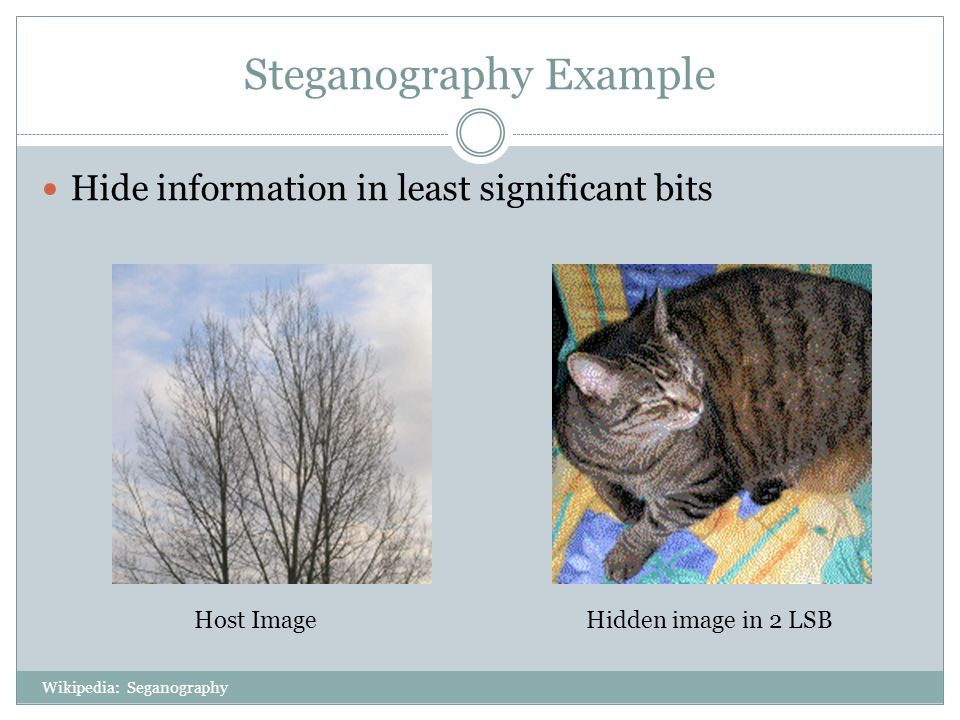 Steganography Example Hide information in least significant bits Host ImageHidden image in 2 LSB Wikipedia: Seganography