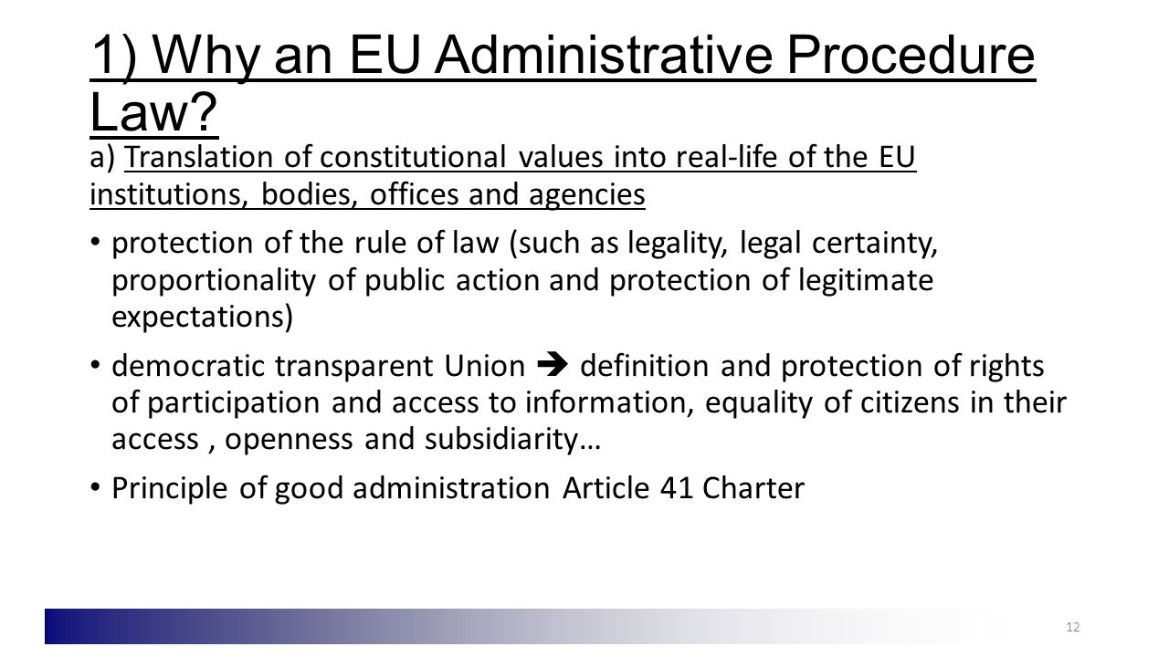 1) Why an EU Administrative Procedure Law.