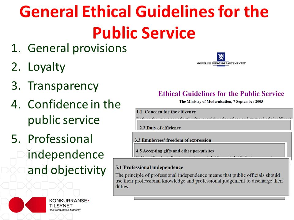 1.General provisions 2.Loyalty 3.Transparency 4.Confidence in the public service 5.Professional independence and objectivity General Ethical Guideline
