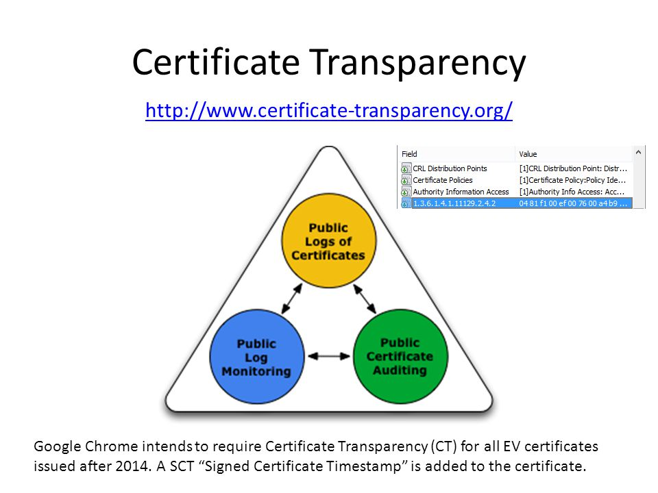 Certificate Transparency http://www.certificate-transparency.org/ Google Chrome intends to require Certificate Transparency (CT) for all EV certificates issued after 2014.