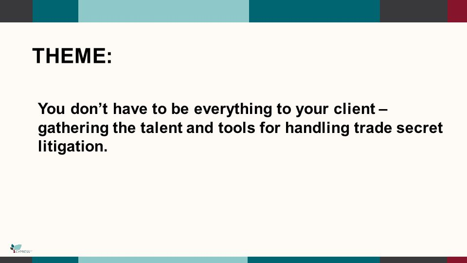 THEME: You don't have to be everything to your client – gathering the talent and tools for handling trade secret litigation.