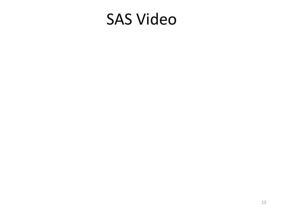 SAS Video 13